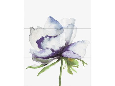 Wind Michaela Viola Decor 3x30x70 (90х70)