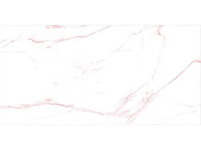 Керамогранит BLANK Raw High Glossy 60x120