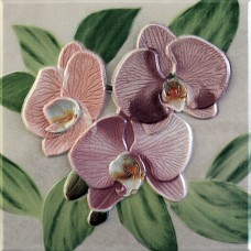 Orquideas Rosa Placa Decor 20 x 20