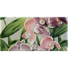 Orquideas Rosa Cenefa-2 10 x 20