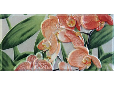 Orquideas Naranja Cenefa-2  10 x 20