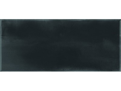 Dante Black 12x24