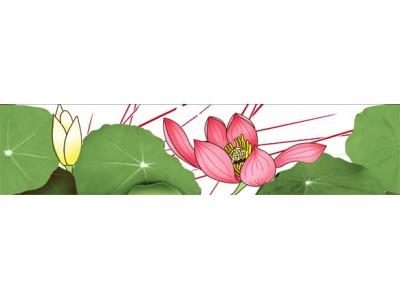 Lotus Cenefa 7 x 30
