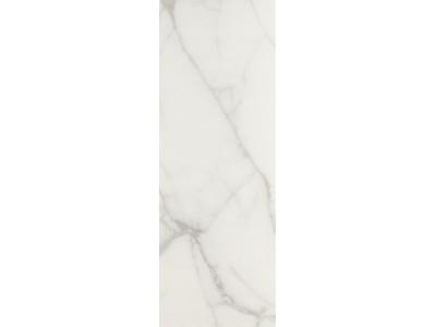 Настенная плита VARESSE 25x70