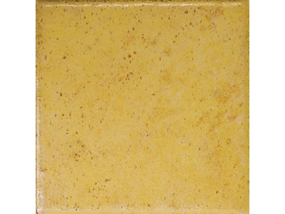 Rumagna SP13 Giallo 10x10