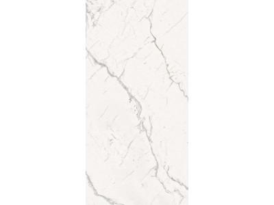 Armonia Silver Full Lappato 60x120