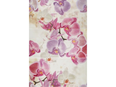 Noa Orquideas Purpura Composicion 75x50 (3x25x50)